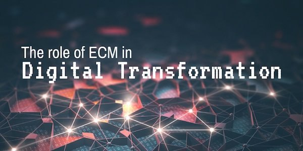 Digital Transformation and the role of